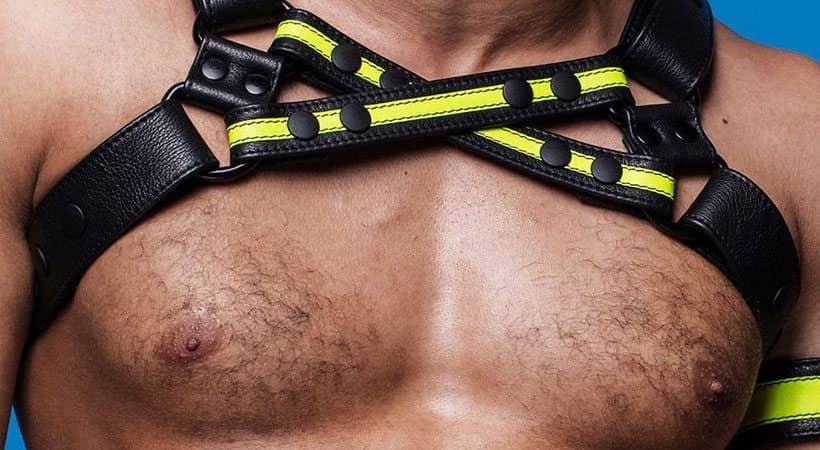 man chest leather black yellow harness