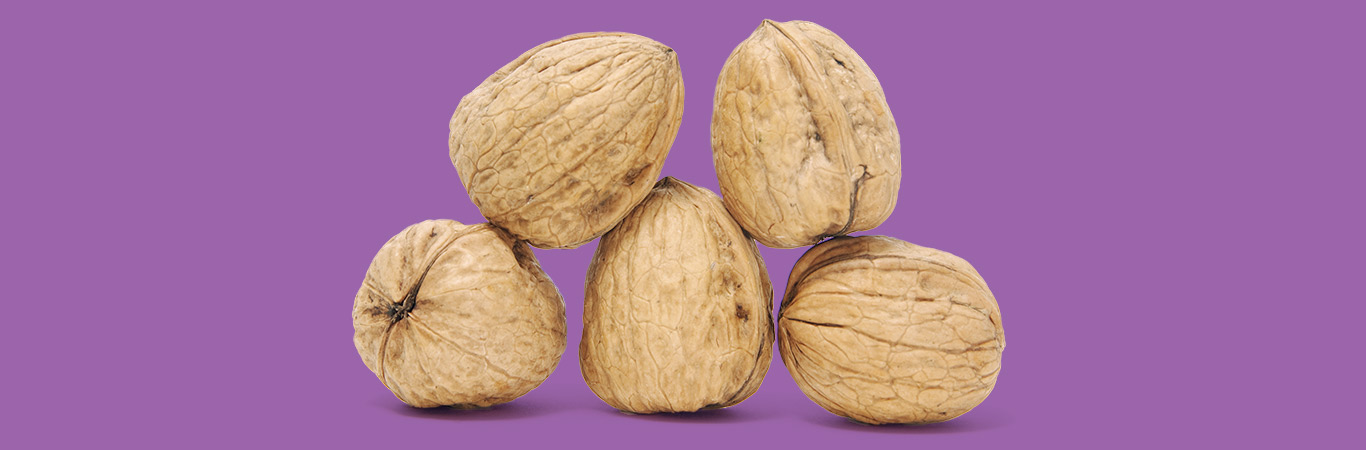 Five walnuts on purple background